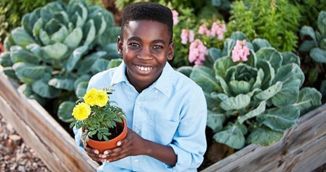 Blog introducing kids to urban gardening 2016