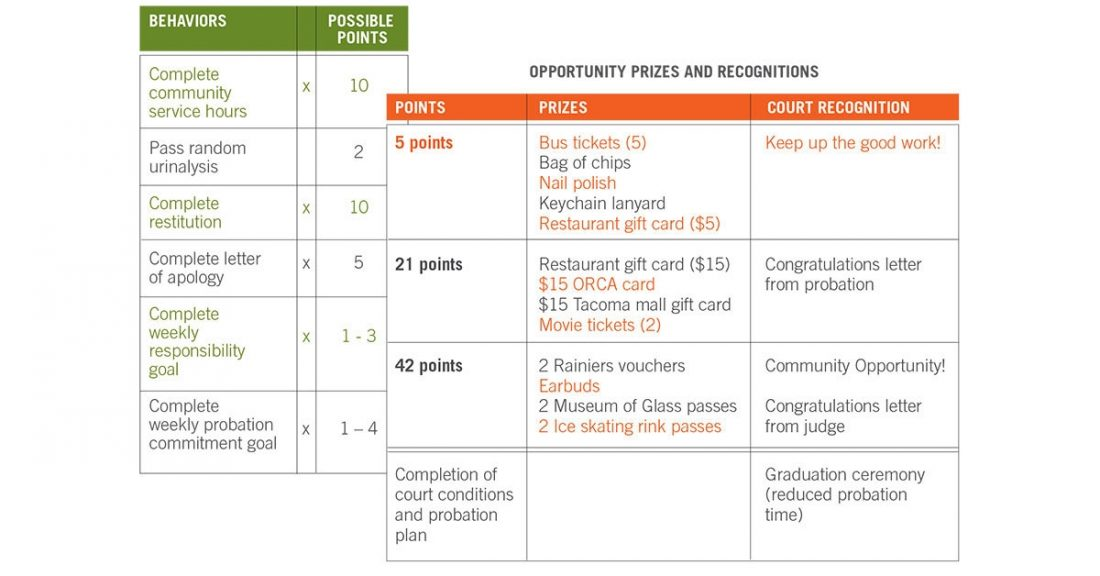 An example of how to develop opportunity-based incentives with young people
