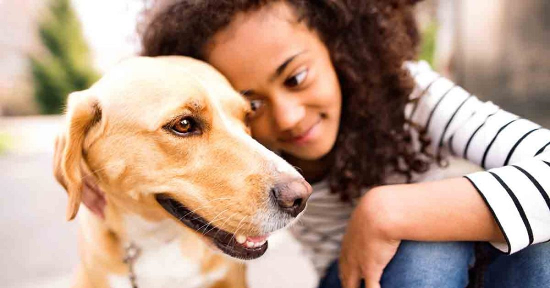 Young girl is learning to care for a dog.