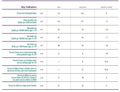 AECF 2010 KIDSCOUNT Data Book 2010 ig2