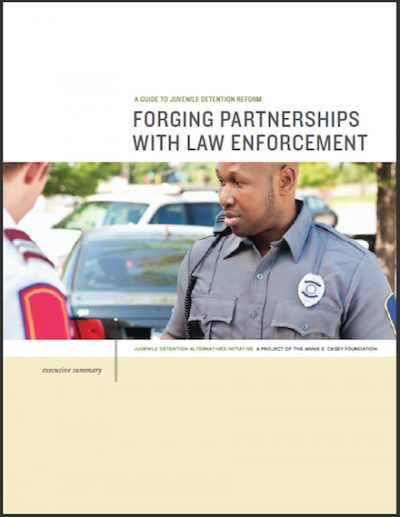 AECF Forging Partnerships Law 2017 cover