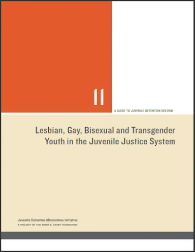 AECF JGBT Youthin JJ System 2015 cover