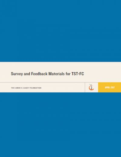 AECF Surveyand Feedback TST FC 2017 cover