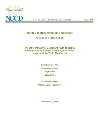 AECF Youth Violence Myths 2009