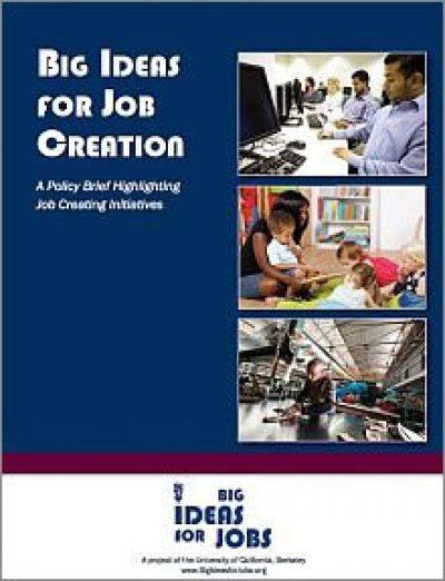 AECF Big Ideas For Job Creation 2011 cover2
