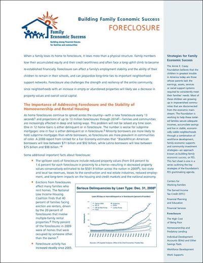 AECF Building Family Economic Success 2009 pdf 1