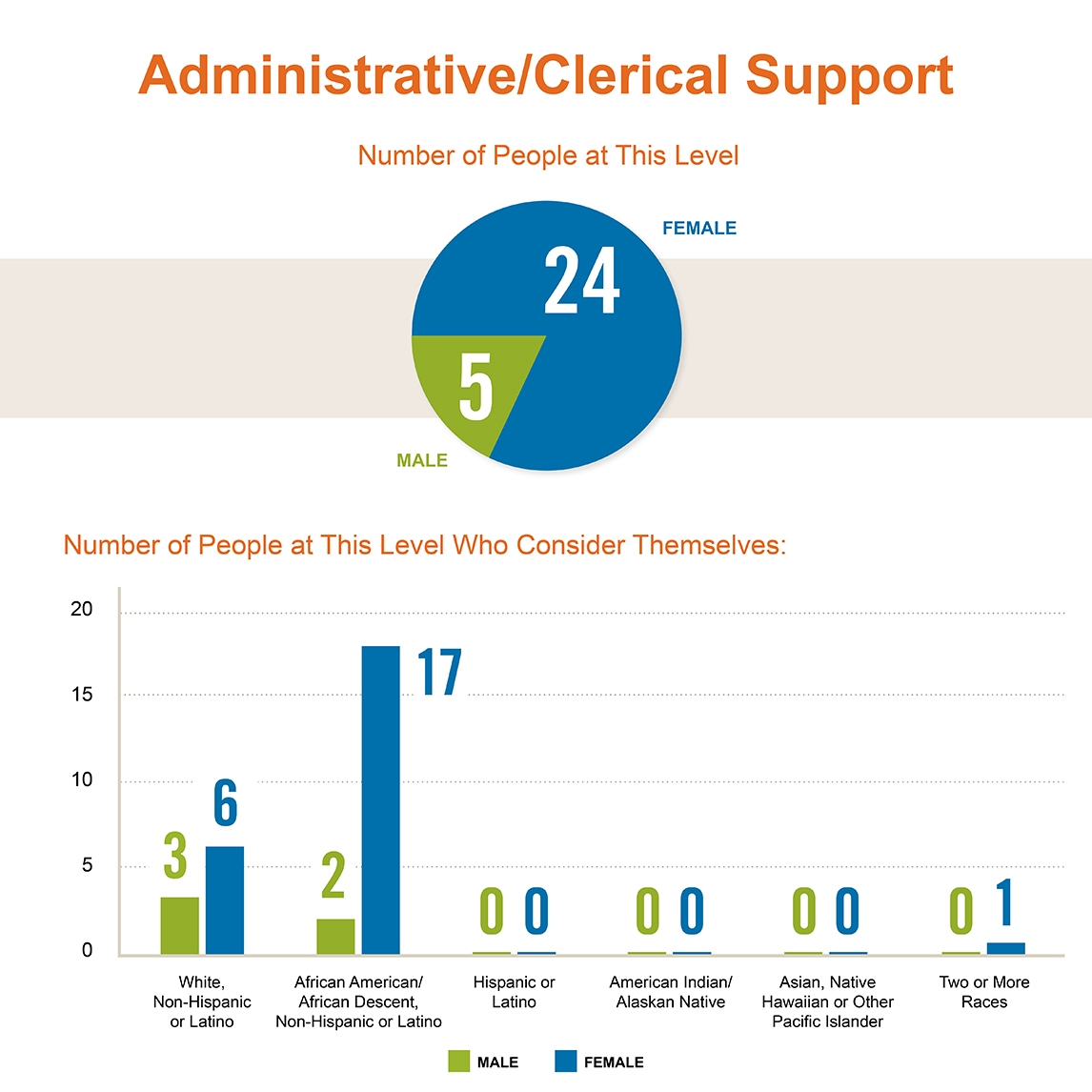 Diversity of Casey's Administrative/Clerical Support Staff