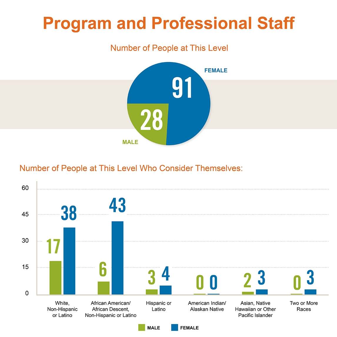 Diversity of Casey's Program and Professional Staff